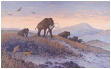 Mammoths on ridge